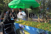 BAHRAIN, Noor El Ain, Garden Bazaar, Farmers Market, fruit stall and shopper, BHR1186JPL