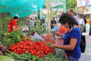 BAHRAIN, Noor El Ain, Garden Bazaar, Farmers Market, shopper at vegetable stall, BHR1252JPL