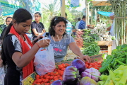 BAHRAIN, Noor El Ain, Garden Bazaar, Farmers Market, shoppers at vegetable stall, BHR1245JPL