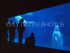CANADA, British Columbia, VANCOUVER, Vancouver Aquarium, Beluga Whales and people, CAN945JPL