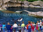 CANADA, British Columbia, VANCOUVER, Vancouver Aquarium, children watching Killer Whale, CAN622JPL