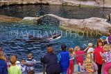 CANADA, British Columbia, VANCOUVER, Vancouver Aquarium, people watching Killer Whale, CAN922JPL