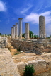 CYPRUS, Limassol area, ruins of the Sanctuary of Apollo Hylates, CYP151JPL