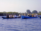 GAMBIA, River Gambia, tourists in dug out canoes (pirogue) on bird watching tour, GAM861JPL