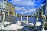 GERMANY, Hamburg, Alster Lake and swans, HAM1054JPL