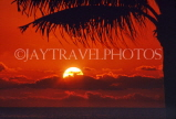 GRENADA, Grand Anse, sunset and coconut tree, GRE474JPL