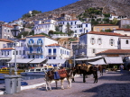Greek Islands, HYDRA, island view and donkeys, GIS1073JPL