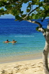 Grenadines, PALM ISLAND, beach with seagrape tree and couple swimming, GR14JPL