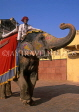 INDIA, Rajasthan, Jaipur, AMBER PALACE and Fort, elephant and mahout, IND135JPL