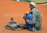 INDIA, South India, Kerala, COCHIN, snake charmer with Cobra, IND1109JPL