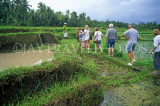 Indonesia, BALI, Ubud, tourists in rice fields, on nature trail of plants and herbs, BAL1069JPL
