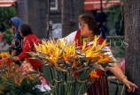 MADEIRA, Funchal, flower stall, with Bird of Paradise flowers, MAD165JPL