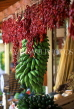 MADEIRA, Funchal Market, dried chillies and bananas, MAD167JPL