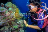 MALDIVE ISLANDS, Coral reef and diver, MAL680JPL