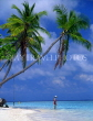 MALDIVE ISLANDS, beach scene with leaning coconut trees, tourist paddling, MAL136JPL