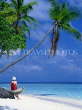 MALDIVE ISLANDS, holidaymaker on beach by leaning coconut tree, MAL124JPL