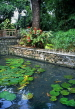 MAURITIUS, Casela Nature Park, landscaped gardens and lily pond, MRU260JPL
