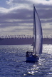 NEW ZEALAND, North Island, AUCKLAND, sailing in Waitemata Harbour, dusk view, NZ39JPL