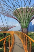 SINGAPORE, Gardens by the Bay, Supertree Grove,  Skyway, SIN454JPL