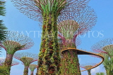 SINGAPORE, Gardens by the Bay, Supertree Grove, SIN442JPL