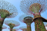 SINGAPORE, Gardens by the Bay, Supertree Grove, SIN443JPL