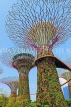 SINGAPORE, Gardens by the Bay, Supertree Grove, SIN444JPL
