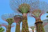 SINGAPORE, Gardens by the Bay, Supertree Grove, SIN445JPL