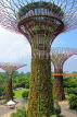 SINGAPORE, Gardens by the Bay, Supertree Grove, SIN447JPL