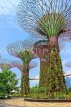 SINGAPORE, Gardens by the Bay, Supertree Grove, SIN451JPL