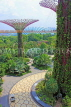 SINGAPORE, Gardens by the Bay, Supertree Grove, SIN455JPL