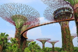 SINGAPORE, Gardens by the Bay, Supertree Grove, SIN473JPL