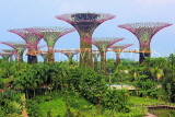 SINGAPORE, Gardens by the Bay, Supertree Grove, SIN475JPL