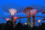 SINGAPORE, Gardens by the Bay, Supertree Grove, illuminations, SIN481JPL