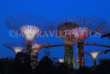 SINGAPORE, Gardens by the Bay, Supertree Grove, illuminations, SIN484JPL