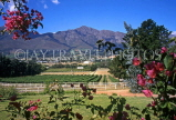 SOUTH AFRICA, Western Cape, Franschoek and Mont Rochelle vineyards, SA1267JPL