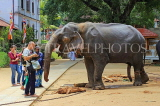 SRI LANKA, Kandy, Temple of the Tooth (Dalada Maligawa), Sri Natha Devalaya, visitors with elephant, SLK3494JPL