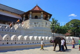 SRI LANKA, Kandy, Temple of the Tooth (Dalada Maligawa), and elephant, SLK2899JPL