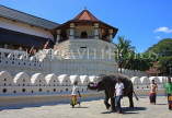 SRI LANKA, Kandy, Temple of the Tooth (Dalada Maligawa), and elephant, SLK2900JPL