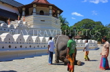 SRI LANKA, Kandy, Temple of the Tooth (Dalada Maligawa), and elephant trained to kneel before temple, SLK2903JPL