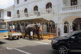 SRI LANKA, Kandy, town centre, elephant and mahout walking along road, SLK3712JPL