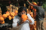 SRI LANKA, Kandy area, roadside stall selling King Coconut (Thambili), drinking fruit, SLK2552JPL