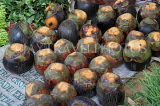 SRI LANKA, Negombo, market, fruit and vegetable market, Thal (Palmyrah) fruit, SLK6201JPL