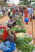 SRI LANKA, Negombo, market, fruit and vegetable market, vendors and shoppers, SLK2712JPL