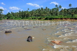 SRI LANKA, Pinnewala, elephant (tusker) bathing in Maha Oya (Big River), SLK2267JPL