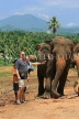 SRI LANKA, Pinnewala Elephant Orphanage, tourists petting adult elephant, SLK2397JPL