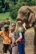 SRI LANKA, Pinnewala Elephant Orphanage, tourists petting elephant, SLK2376JPL
