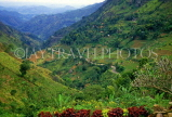 SRI LANKA, hill country, Ella, mountain scenery (view from Ella Rest House), SLK322JPL