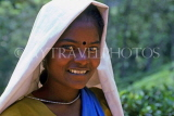 SRI LANKA, hill country, Nuwara Eliya, Tea plantation worker, portrait, SLK371JPL