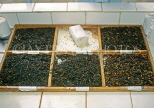SRI LANKA, hill country, Tea factory, graded tea ready for visual inspection, SLK2089JPL