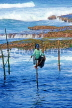 SRI LANKA, south coast, Ahangama area, Stilt Fisherman, SLK1995JPL
